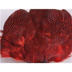 Pärlhöna helt skinn färgat rött