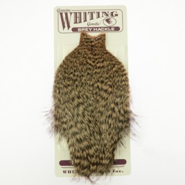 Whiting Spey Hackle Hen Cape - Grizzly Salmon