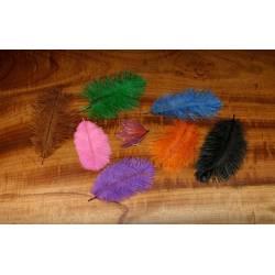 Strutshackel Spey plumes
