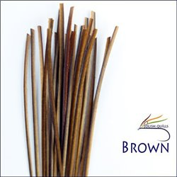 Stripped Peacock Quill - Brown