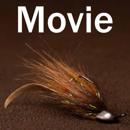 Wave Tail sculpin
